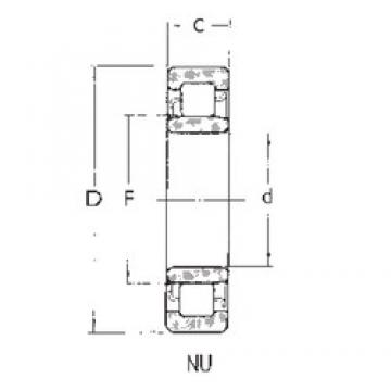 25 mm x 80 mm x 21 mm  FBJ NU405 Rodamientos De Rodillos