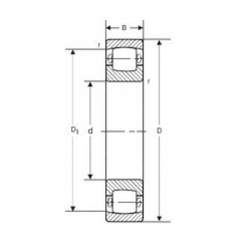 60 mm x 110 mm x 22 mm  SIGMA 20212 KVP Rodamientos De Rodillos Esféricos