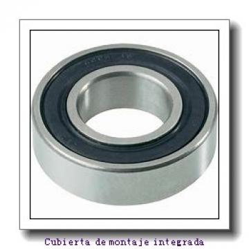 HM127446 -90118         Cojinetes de rodillos cilíndricos
